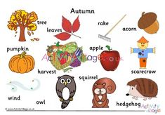 Autumn word mat - part of a collection of autumn vocabulary resources Animals Name List, Autumn Animals, Autumn Activities For Kids, Autumn Crafts, Autumn Trees, Vocabulary, Kids Rugs, Names, English