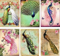 Vintage Inspired Peacock Tag Blank Small Card ATC Altered Art Set of 6 | eBay