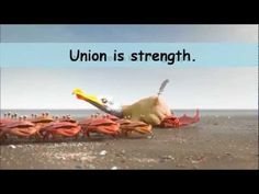 """Union Is Strength""  Great video showing power of collaboration via @LarryFerlazzo"