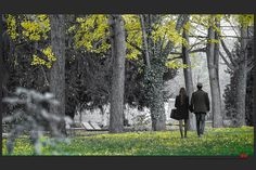 https://flic.kr/p/AC1UKq | Autumn at the Jewish cemetery in Ferrara | © This photo is copyrighted by the photographer and may not be used without permission.