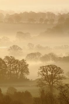 Pewsey Vale, Wiltshire #Places