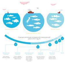 Infographics: Annual Report by Olga Baranova, via Behance