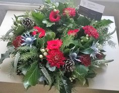 Christmas - Collections - Google+ Christmas Wreaths, Holiday Decor, Liverpool, Floral, Flowers, Collections, Google, Design, Home Decor