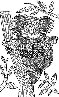 coloring pages for adults. koala bear. adult coloring pages. animal coloring pages. digital jpg