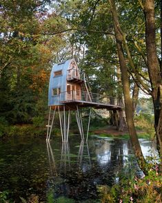 Amazingly creative and beautiful small home on stilts raising you up to the tree tops.   Beautiful!