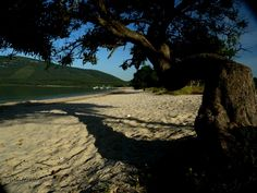 the Mugoni beach which lies in the Marine Protected Area of Capo Caccia Sardinia