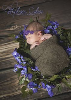 Melissa Calise Photography (Newborn Girl Spring Flowers Photo Shoot Ideas Posing Wrap)