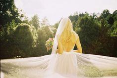 37 Wedding Photography, Wedding Dresses, Fashion, Wedding Shot, Bride Gowns, Wedding Gowns, Moda, La Mode, Weding Dresses