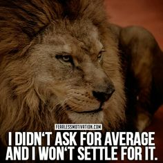 Never settle for average...