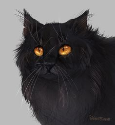 """raggabrashtm: """"some late night yellowfang art for the heart and soul :) """""""
