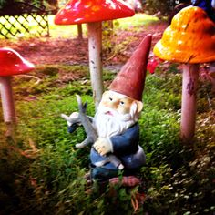 1000 Images About Gaga For Gnomes On Pinterest Gnomes