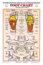 Hand and Foot Reflexology Chart. 25 Hand and Foot Reflexology Chart. top Of Foot Reflex Chart Vatan Vtngcf Hand Massage, Self Massage, Fertility Massage Self, Facial Massage, Reflexology For Fertility, Massage Body, Foot Chart, Traditional Chinese Medicine, Alternative Health