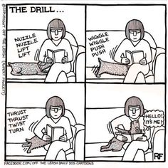 If You're A Dog Person, You Will Love These Comical Cartoons