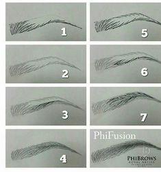 f227f2a0dfadfca6540e07fcf1a78105--microshading-eyebrows-drawing-eyebrows.jpg (681×727)