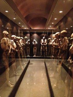 Museo de las Momias de Guanajuato en Guanajuato, Guanajuato