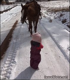 Extra Funny Picture - Horses Funny - Funny Horse Meme - - The post Extra Funny Picture appeared first on Gag Dad. Pretty Horses, Horse Love, Beautiful Horses, Animals Beautiful, Horse Pictures, Animal Pictures, Cute Pictures, Cute Funny Animals, Funny Cute