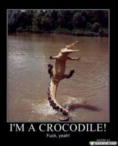 I would do this too if I were a crocodile!