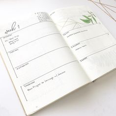Bullet journal weekly layout, script header, plant drawing, geometric drawing.   @persimmonandgold