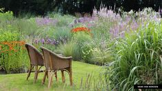 Jacobstuin. Planting Design: Jaap de Vries. by Hans van Horssen. Love the exuberance of the perennials towering the lawn