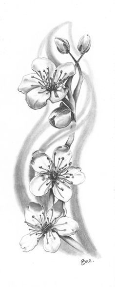cherry blossom tattoo black and grey