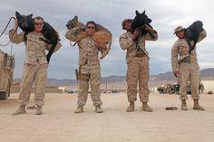1st Law Enforcement Battalion