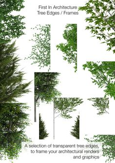 I have put together a selection of tree edges / frames that are really good for framing your architectural graphics and renders. They can