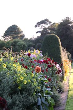Visit The Beautiful Rhs Gardens Throughout Uk For Fun Days Out All Family