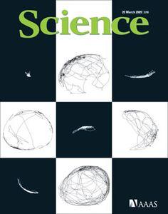 Capa da Science de Março 2009: estudo liderado pelo brasileiro Miguel Nicolelis sobre o Mal de Parkinson