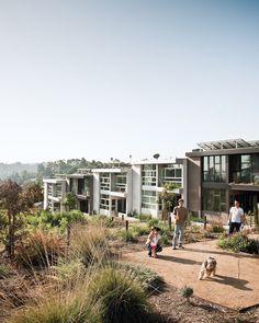Auburn 7  sustainable housing in LA