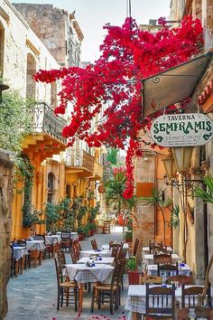 GREECE! Yes please! My love for this sort of streets.  I feel so happy just looking at it! http://www.trish120.wordpress.com                                                                                                                                                      More