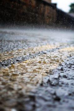 Rain by (Alejandro Manjon)