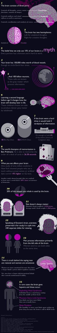 Funny pictures about 15 facts about the brain. Oh, and cool pics about 15 facts about the brain. Also, 15 facts about the brain. Brain Facts, Brain Science, Life Science, Computer Science, Fun Brain, Science Facts, Science Education, Health Education, Physical Education