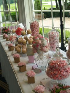 Baby Bird Themed baby shower candy table