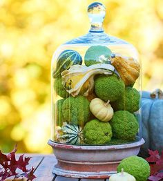 Combine the best of the fall harvest in an elegant glass display. More fall decorating:  http://www.bhg.com/decorating/seasonal/fall/fall-decorating-ideas/?socsrc=bhgpin092513glassdisplay#page=15
