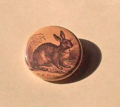 Rabbit Vintage Image 1 inch Pinback BUTTON. $1.50, via Etsy.