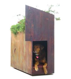 dog house green roof wrightfront_susainable_pet_urbangardensweb