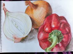 Using Hatching to create Tone in Fruit and Vegeables I started out on this exercise by drawing the 3 different vegetables with the coloure. Vegetable Drawing, Vegetable Painting, Gcse Art Sketchbook, Sketchbooks, Sketching, Growth And Decay, Fruits Drawing, Observational Drawing, Object Drawing