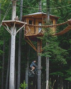 Private tree house in Sandpoint, Idaho. Photo by Beautiful Tree Houses, Cool Tree Houses, Polo Norte, Tree House Designs, Tiny House Movement, Photos Of The Week, Walking In Nature, Nature Animals, Play Houses