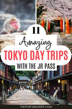 These easy day trips from Tokyo by train are perfect for JR pass holders! From a quick Tokyo to Kyoto day trip to a long Yokohama day trip, these best day trips from Tokyo will make your Tokyo itinerary even more special. | JR pass Japan | Japan rail pass itinerary | Planning a trip to Japan | Japan travel ideas | Japan travel itinerary | Japan travel tips | Tokyo travel destinations | Tokyo day trips | Tokyo places to visit | Japan day trips from Tokyo | Japan travel bucket lists… Tokyo Travel Guide, Tokyo Japan Travel, Japan Travel Guide, Japan Japan, Asia Travel, Tokyo Day Trips, Kyoto Day Trip, Tokyo Places To Visit, Travel Ideas