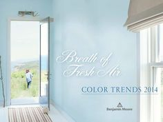 "Got the ""Blues""? • Tips & Ideas on great new blue paint colors! Including this color from benjamin moore."