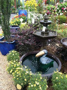August at the garden center