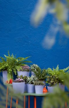 blue masonry paint colours - Google Search