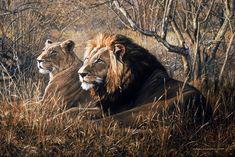 lion art - Google Search