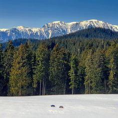 Rc Cars, Mount Rainier, Mountains, Nature, Travel, Naturaleza, Viajes, Destinations, Traveling