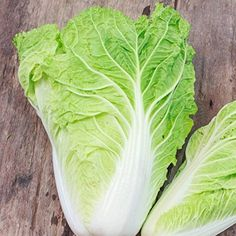 "Michihili is an heirloom Chinese cabbage. Its light green leaves are tender and delicious, ideal for stir fries and pickling, and any other Asian dishes. ""Michihili"" Chinese cabbages thrives in milder climates but can be planted in any zones. Cabbage Seeds, Cabbage Plant, Asian Vegetables, Fall Vegetables, Veggies, Herb Seeds, Garden Seeds, Chinese Cabbage, Kimchi"