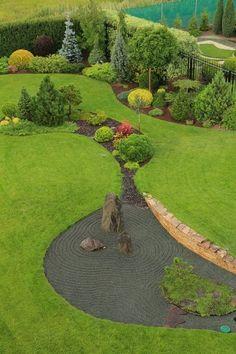 conofer shrub garden
