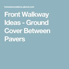 Front Walkway Ideas - Ground Cover Between Pavers