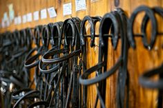 What stable owner or manager doesn't want to be more organized? The getting organized is step one, and the staying organized is step two. Here are 10 tips to help you get and stay organized around