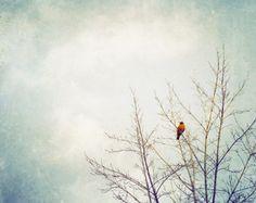 art white bird dark sky - Google Search