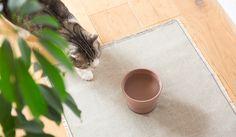 大谷焼の猫用水飲み器「Cat+Water+Bowl」をリリース|RINN